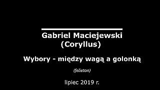 Gabriel Maciejewski: Wybory – między wagą a golonką